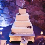 holly-hedge-customized-wedding-cake-desserts-pastry-chef-square-swiss-dot-cake