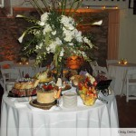 holly-hedge-estate-award-winning-cuisine-fieldstone-barn-cocktail-hour-reception-uplighting-romantic