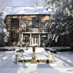 Winter in the Courtyard
