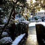 holly-hedge-estate-wedding-events-coporate-dinners-stone-terrace-winter