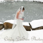 holly-hedge-wedding-country-romantic-winter-rustic-chic-pond-snow-covered-bride-beautiful